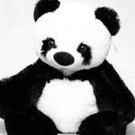 Мягкая панда 77 см